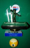 Pool Trophy, 9 ball